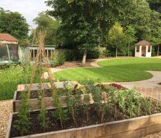 Hampshire garden design