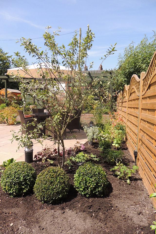 A Courtyard Garden In Central Winchester